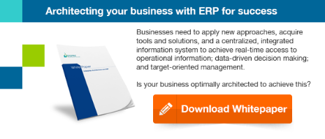 Enterprise Architecture and ERP Whitepaper download